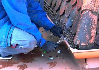 Výškové instalace zábran proti ptactvu 07